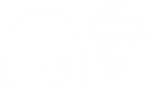 Stora ljudbokspriset logo