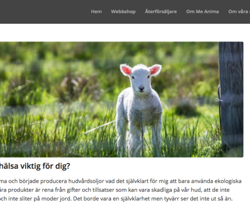 Blogg MeAnima